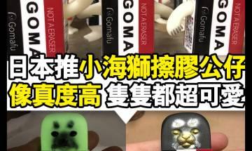 【#買了球鞋再買玩具】文具控必愛!日本小海獅擦膠公仔