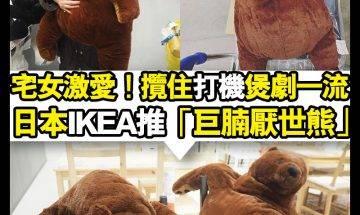 【#時事新聞台】日本IKEA又有得意公仔推出!  日本I