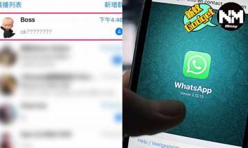 WhatsApp功能多蘿蘿 13大Whatsapp實用隱藏功能2020年版 錄音轉文字、已讀不回不被發現│科技控