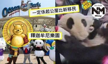 海洋公園面臨倒閉! 「海洋公園執咗起乜好」網民創意合集  網民:熊貓今次真係要做food panda啦
