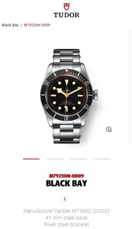 Tudor, 帝舵, 手錶, 2020, Black Bay, 入門級