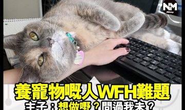 【#時事新聞台】想WFH?葉師傅,唔係咁易㗎!