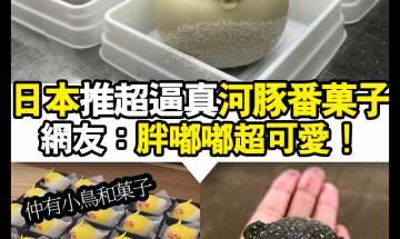 【#Chill好食】日本推超真河豚番菓子!