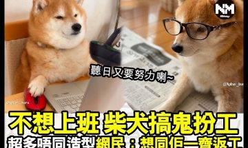 【#時事新聞台】放完假,又要準備返工喇!