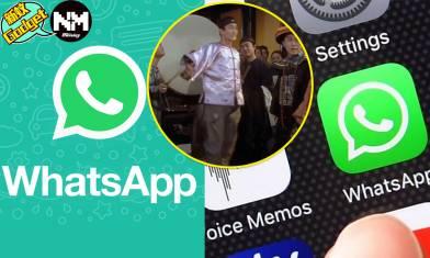 Whatsapp確認不會撤回新條款 不接受功能將全面受限 一文學識備份、轉移好友及群組、刪除帳號懶人包