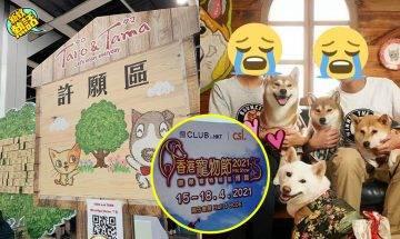 【香港寵物節】BB貓慘被柴犬咬斷頸骨亡!狗主不顧而去:我隻狗不嬲都會咬貓!